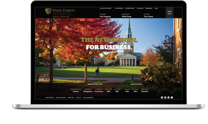 University & College Websites